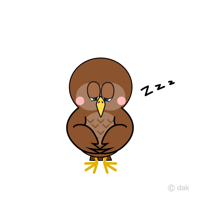 Sleeping Owl Cartoon