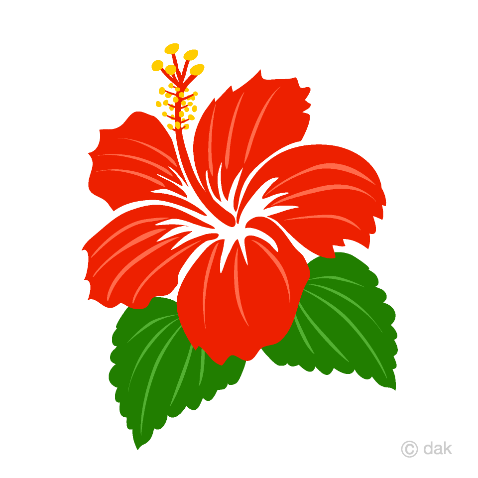 Simple Red Hibiscus Clipart