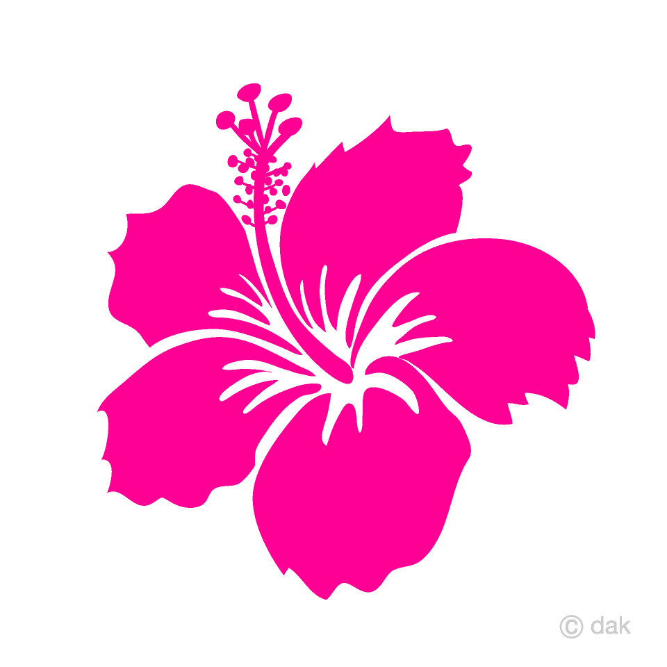 Pink Hibiscus Flower Clipart
