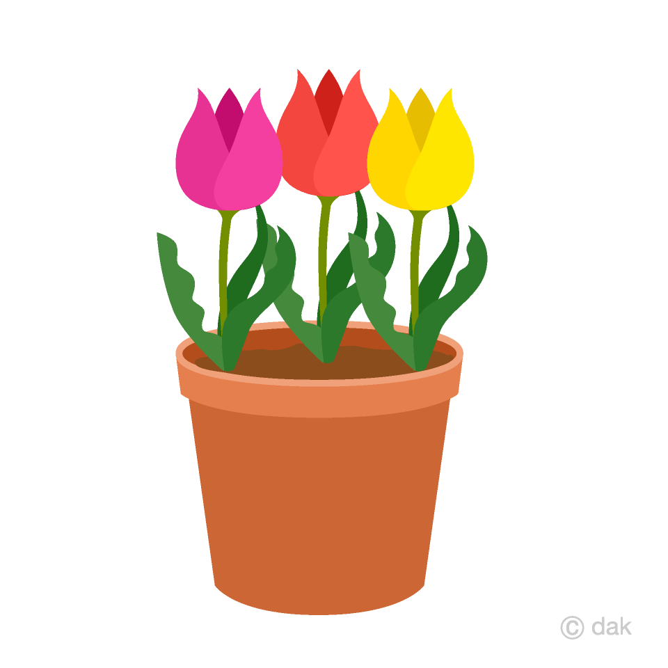 Potted Three Tulip Clipart