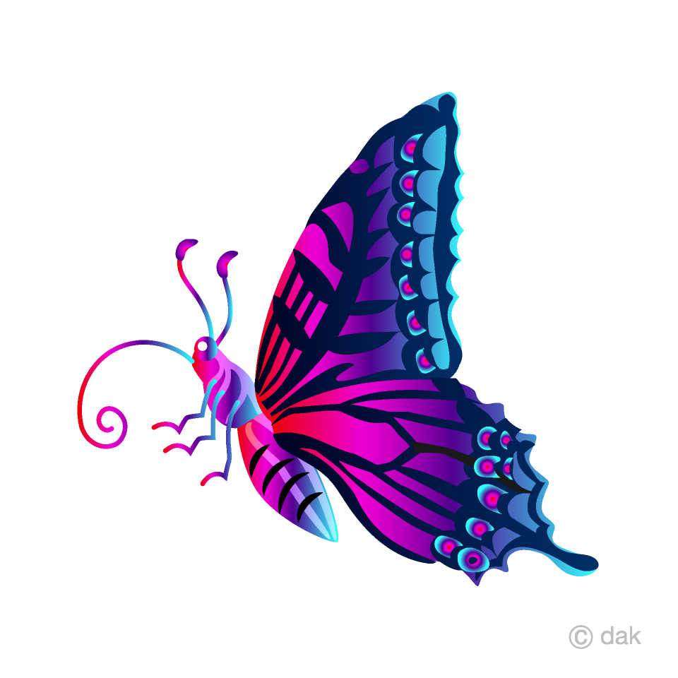 Purple Colorful Butterfly with Side