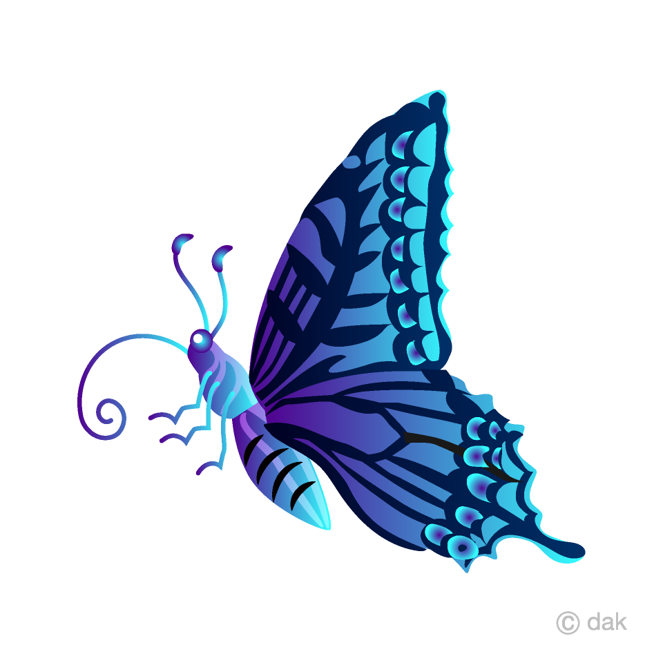 Blue Colorful Butterfly with Side