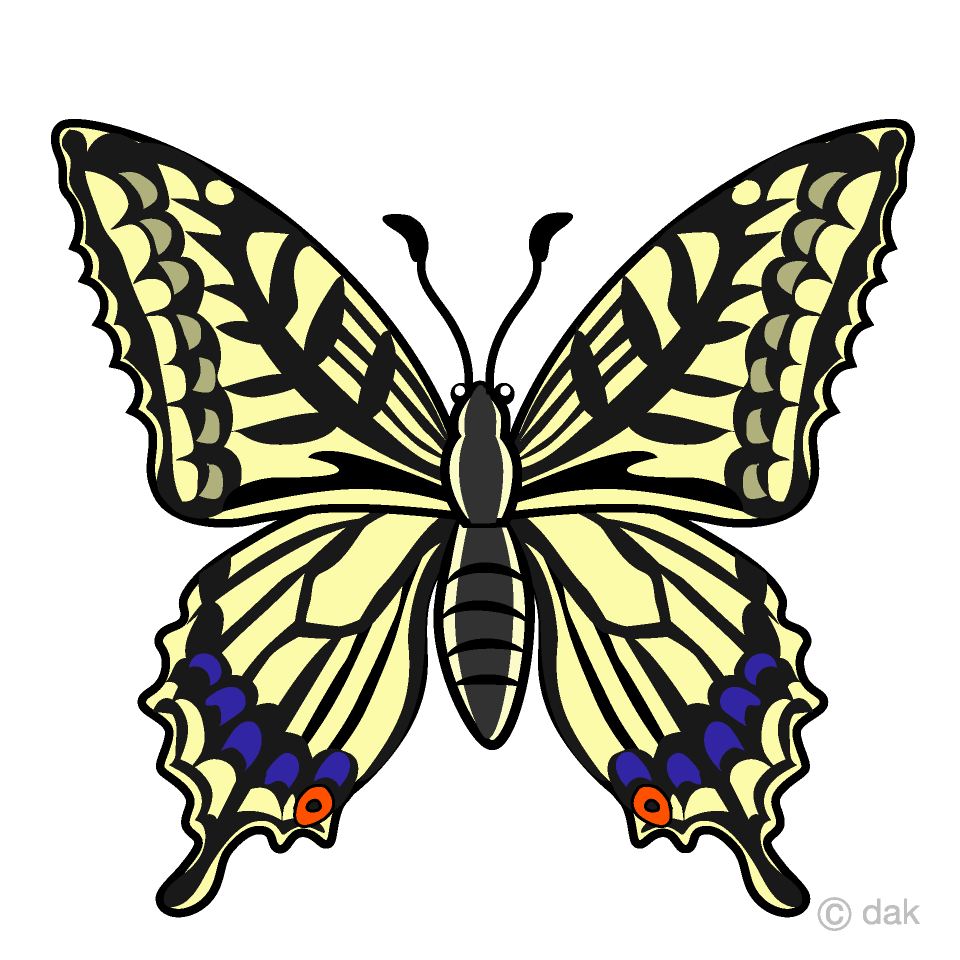 Yellow Swallowtail Butterfly Clipart