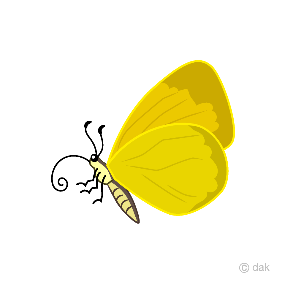 Yellow Butterfly with Side