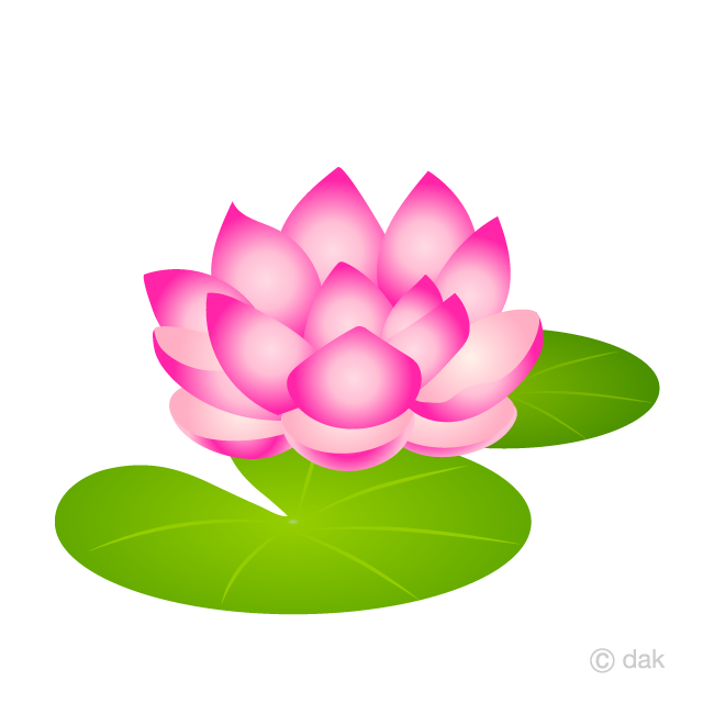 Water Lily Flower Clipart