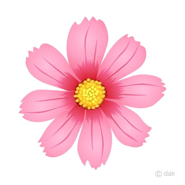 Cosmos Flower Clipart