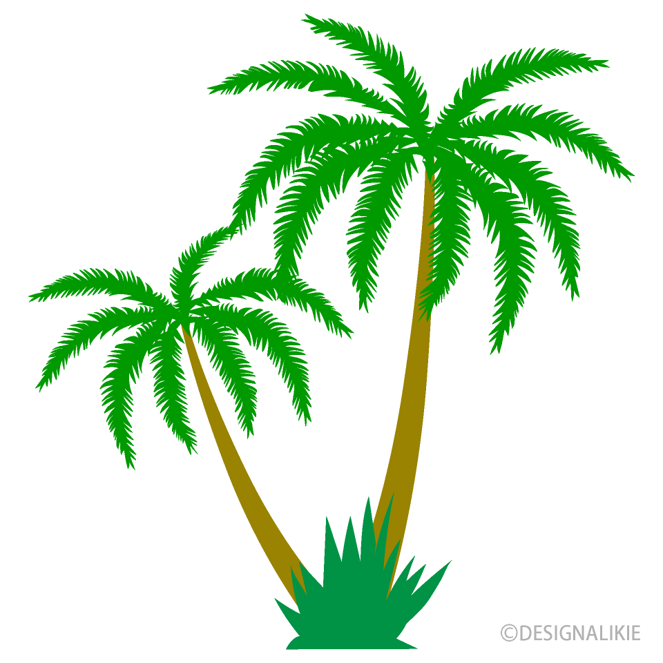 Two Palm Trees Clipart Free Png Image Illustoon