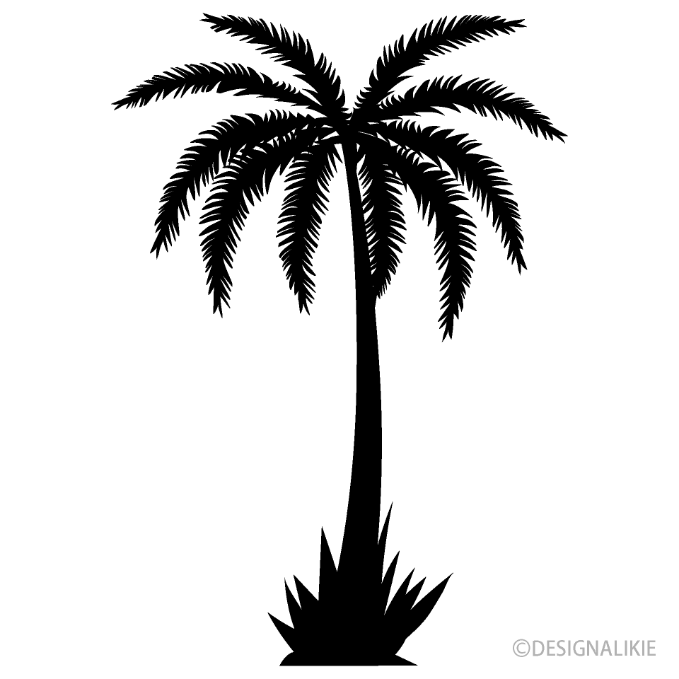 One Palm Tree Black and White