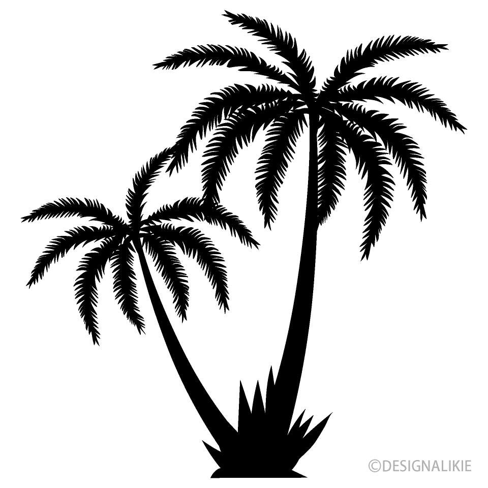 Two Palm Trees Black and White