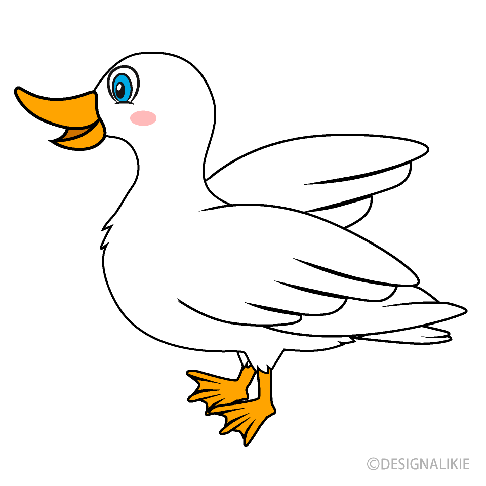 White Duck Cartoon
