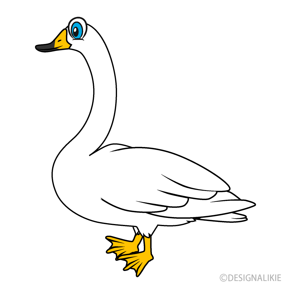 Swan Cartoon