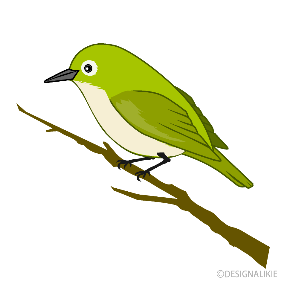 Green Bird Clipart