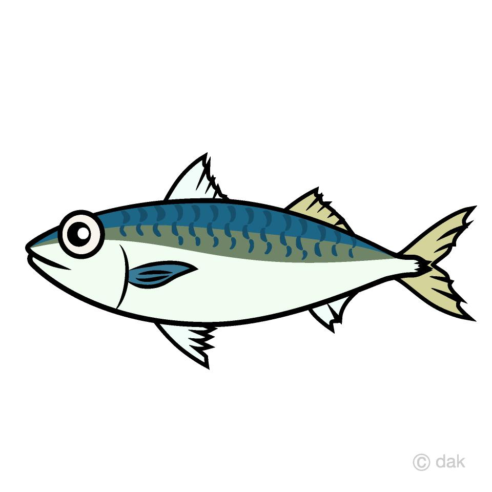 Mackerel Fish Clipart Free Png Image Illustoon