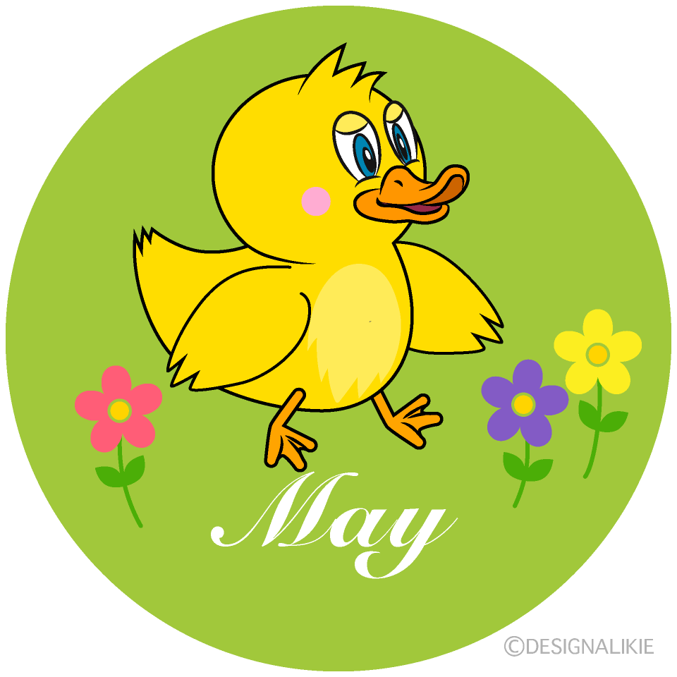 Duck May Clipart