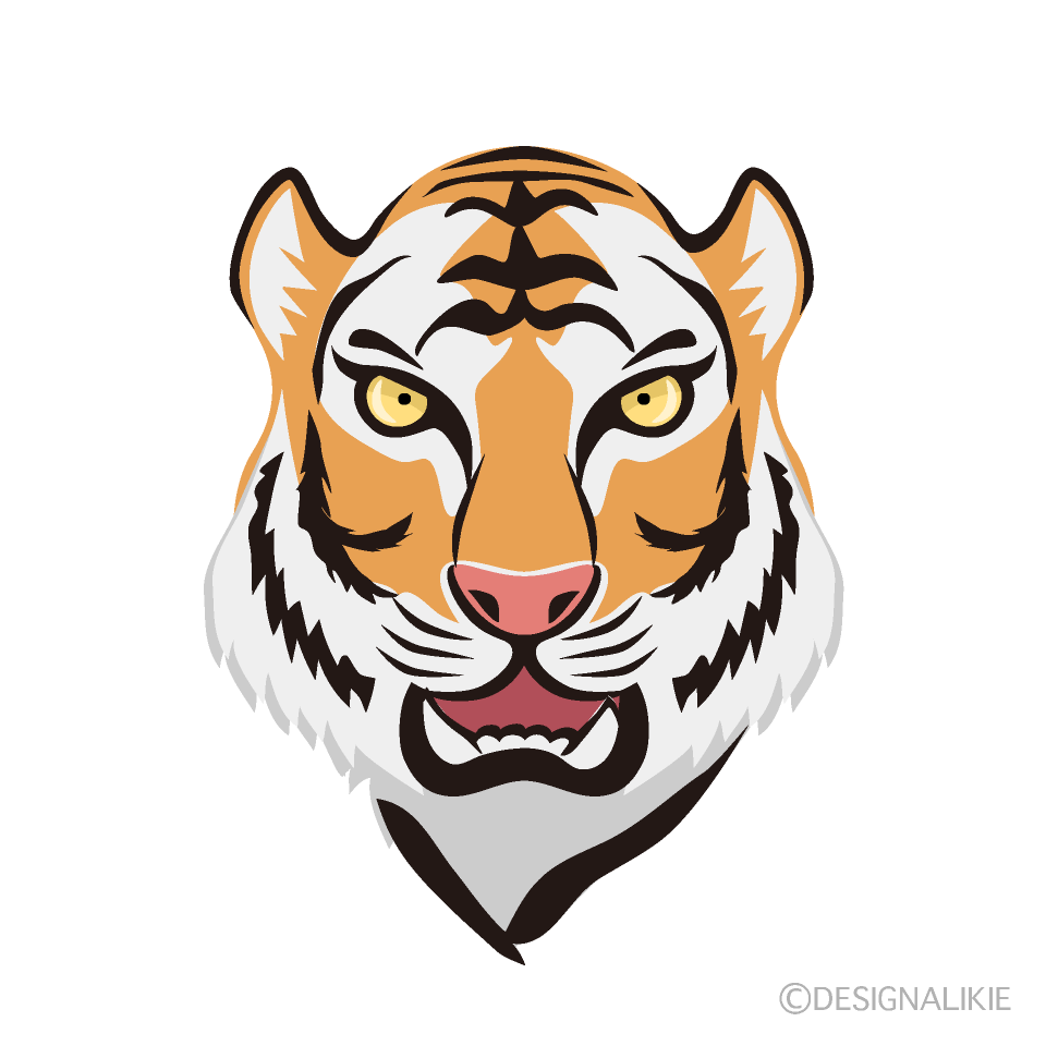 Cool Tiger Face