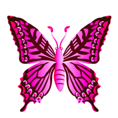 Pink Colorful Butterfly Clipart