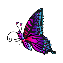 Colorful Butterfly with Side