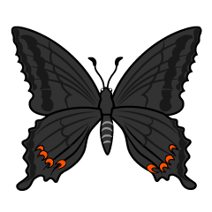 Black Swallowtail Butterfly Clipart