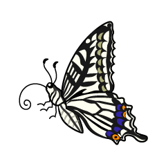 Swallowtail Butterfly with Side