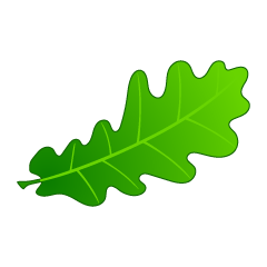 Green Acorn Leaf Clipart