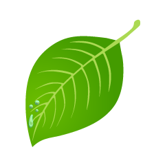 Water Drop and Leaf Clipart