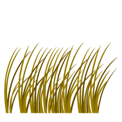 Withered Grass Clipart