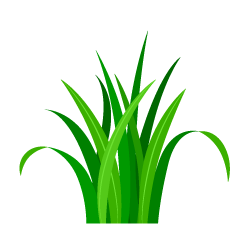 Simple Green Grass Clipart