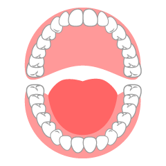 Open Mouth Tooth Clipart