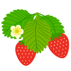 Strawberry Flower Clipart
