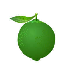 Green Lime Clipart