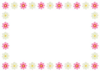 White and Pink Flower Border