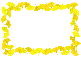 Ginkgo Leaves Border