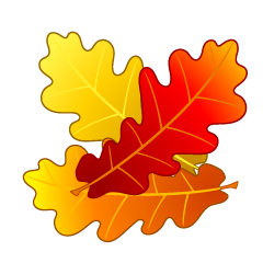 Acorn Autumn Leaves Clipart