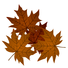 Maple Fallen Leaves Clipart