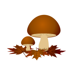 Mushrooms and Fallen Leaves Clipart