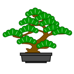 Pine Bonsai Clipart