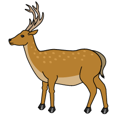 Deer from Side Clipart
