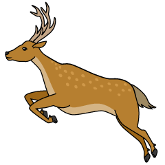 Jumping Deer Clipart