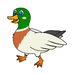 Walking Mallard Clipart