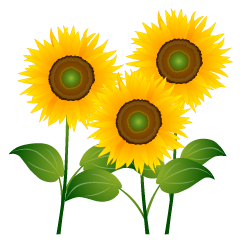 Three Sunflowers Clipart