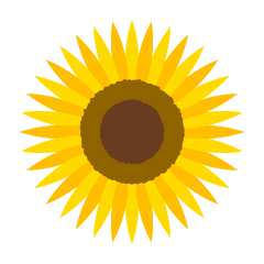 Simple Sunflower Flower Only