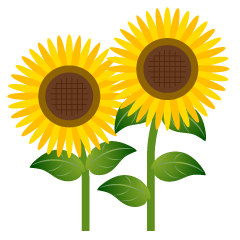 Two Simple Sunflower Clipart