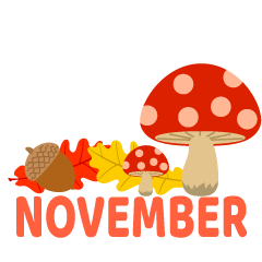 Mushroom and Acorn November