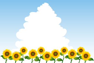 Many Sunflowers in Sky Background