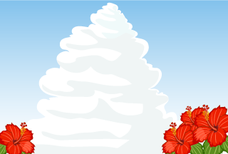 Hibiscus and Cloud Background