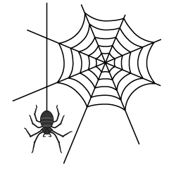 Spiderweb and hanging spider