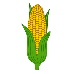 Corn with Leaves