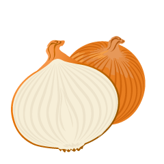 One Onion and Cut Onion