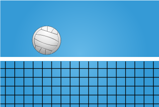 Volleyball Net Wallpaper