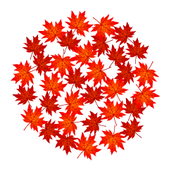 Red Fall Leaves Circle